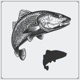 Illustration de vecteur d'un poisson Silhouette des poissons Photos stock