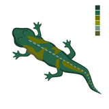 Illustration de vecteur d'une salamandre de lézard Photos stock