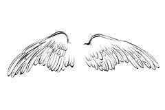 Illustration de vecteur de bande dessinée de croquis d'ailes illustration stock