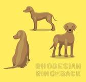 Illustration de vecteur de bande dessinée de Rhodesian Ringeback de chien illustration stock