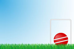 Illustration de vecteur de champ d'herbe de croquet Photo stock