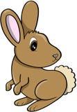 Illustration de vecteur de lapin Images libres de droits