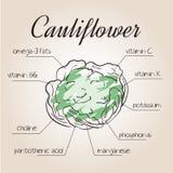 Illustration de vecteur de liste d'éléments nutritifs pour le chou-fleur Photos libres de droits