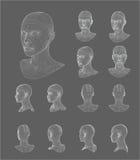 Illustration de vecteur de modèle de la tête 3d de Wireframe Image stock