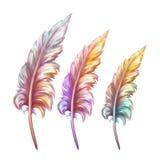 Illustration de vecteur de plume dans trois couleurs Photos stock
