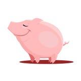 Illustration de vecteur de porc Photos stock