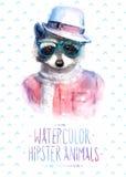 Illustration de vecteur de portrait de raton laveur dedans Photographie stock libre de droits