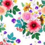 Illustration de vecteur de sans couture floral La belle Floride tirée par la main Images stock