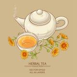 Illustration de vecteur de thé de Calendula Images stock