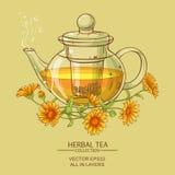 Illustration de vecteur de thé de Calendula Photographie stock