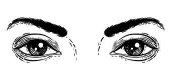 Illustration de vecteur des yeux humains dans gravé Dessin de main à b illustration libre de droits