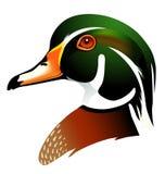 Illustration de vecteur du canard en bois Photo stock