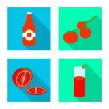 Illustration de vecteur du symbole végétal et délicieux Collection de l'illustration courante végétale et naturelle de vecteur illustration de vecteur