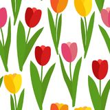 Illustration de vecteur de Tulip Flowers Seamless Pattern Background de ressort Illustration Libre de Droits
