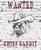 Illustration de vintage du gorille-bandit Images stock