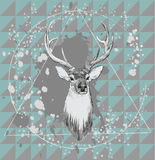 Illustration with deer head. Hand drawn vector. Royalty Free Stock Photography
