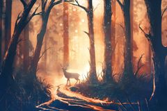Illustration of a deer in warm forest royalty free stock photography