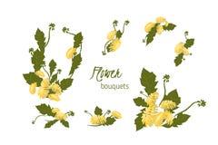 illustration Delicate Dandelion flower Stock Photos