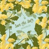 illustration Delicate Dandelion flower royalty free illustration