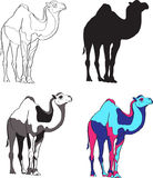 Illustration depicting camels, made contour, silhouette, black and white spots and bright colors Royalty Free Stock Photo