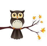 Owl On Branch. An Illustration depicting a cute owl sitting on a branch Stock Image