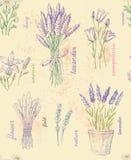 Illustration der Blume Stockfotografie