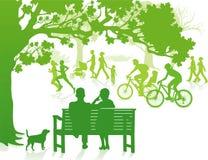 Im grünen Park Stockfotografie