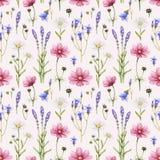 Illustration der wilden Blumen Stockfoto