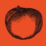 Illustration des Apfels Logo, Ikone, Aufkleber Lizenzfreie Stockbilder