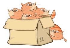 Illustration des chats mignons et d'une boîte le chef heureux de crabots mignons effrontés de personnage de dessin animé de fond  illustration stock