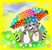 Illustration des couples des ratons laveurs tenant le parapluie Photographie stock libre de droits