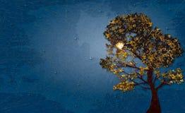 Illustration des Herbstbaums auf sternenklarer Nacht des Hintergrundes mit Marmorpapiereffekt und des Raumes für Ihren Text Stockfoto