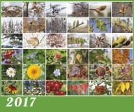 Illustration des Kalenders für 2017 Lizenzfreie Stockfotos