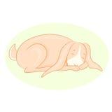 Illustration des Karikaturschlafenkaninchens Lizenzfreie Stockfotos