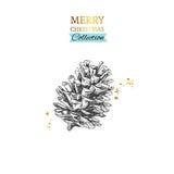 Illustration des Kiefernkegels Frohe Weihnachten und guten Rutsch ins Neue Jahr lizenzfreie abbildung
