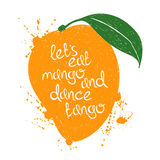 Illustration des lokalisierten orange Mangofruchtschattenbildes Lizenzfreies Stockfoto