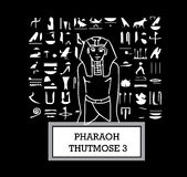 Illustration des Pharaos Thutmose III lizenzfreie abbildung