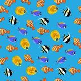 Illustration des poissons mauresques d'idole Photos stock
