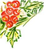 Illustration des roten Viburnum mit Blättern Lizenzfreie Stockfotografie