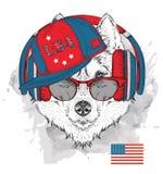 Illustration des Schlittenhunds in den Gläsern, Kopfhörer und im Hip-Hop-Hut mit Druck von USA Auch im corel abgehobenen Betrag Lizenzfreie Stockfotos