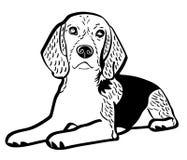 Illustration des Spürhundhundevektors ENV durch crafteroks lizenzfreie abbildung
