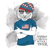 Illustration des Tigerhippies kleidete oben in den Gläsern und im T-Shirt mit Druck von USA-Flagge an Auch im corel abgehobenen B Stockbilder