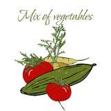 Illustration des Veggies savoureux photo stock
