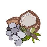Illustration des Veggies savoureux images stock