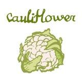 Illustration des Veggies savoureux Chou-fleur de vecteur illustration stock
