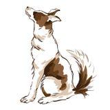 Illustration des Vektorhandabgehobenen betrages des netten Hundes auf weißem Hintergrund Lizenzfreie Stockbilder
