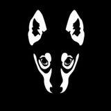 Illustration des Wolfgesichtes auf schwarzem Hintergrund lizenzfreie abbildung