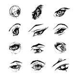 Illustration des yeux femelles Photos libres de droits