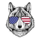Illustration dessinée par Wolf Dog Hand pour le tatouage, emblème, insigne, logo Image stock