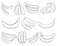 Illustration of different bananas. Isolated on white Royalty Free Stock Images